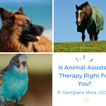 Should You Try Animal-Assisted Therapy?